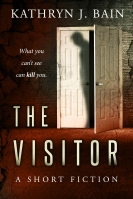 thevisitor (2)